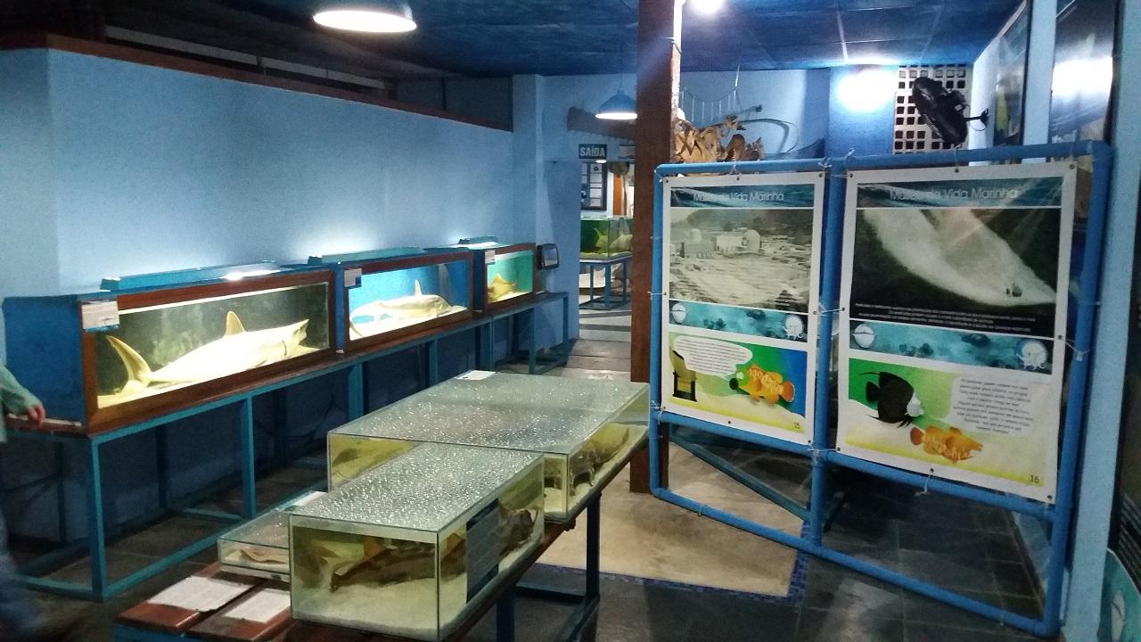 Aquário de Ubatuba - Museu da Vida Marinha