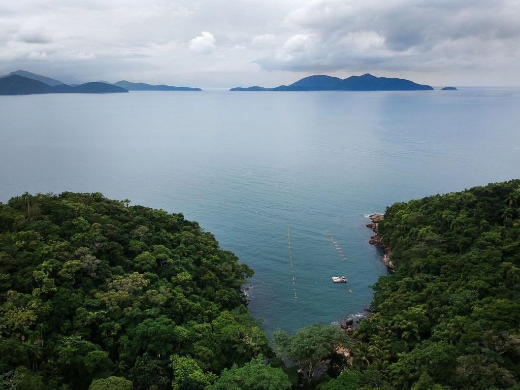 Vista aérea da Ilha do Mar Virado @caminhos.do.sup