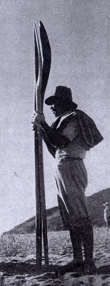 Zé Capão